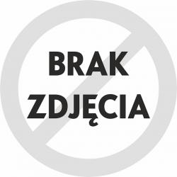 OSŁONA PROWADNIC ZACISKU 16151 CENTRIC (FORD Mustang 2015-2017]